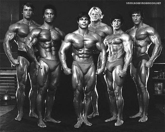 from aesthetics to mass   frank zane juicedmuscle