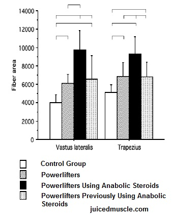 cause and effect of steroids in baseball