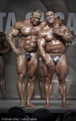 pro steroid cycles for mass