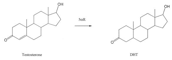 proviron 25 mg uses