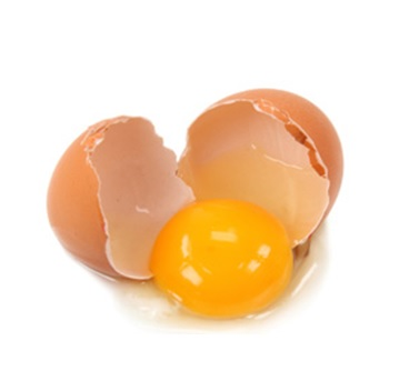 Egg Nutrition: Yolk vs. White