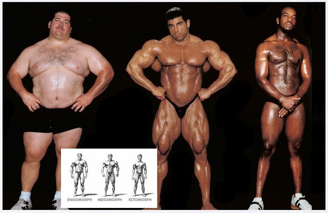 steroid different types